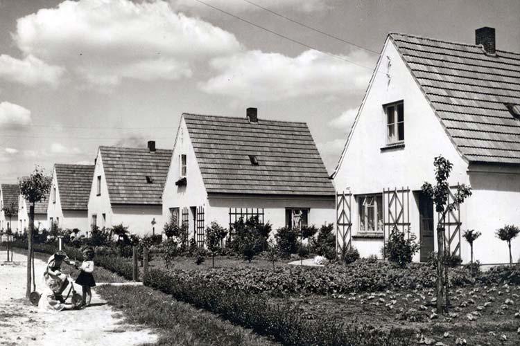 Einfamilienhäuser mit Nutzgärten um 1954.