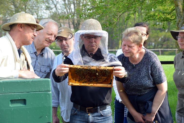 Die Hobbyimker des Imkervereins Oldenburg begeistern sich für Bienen.