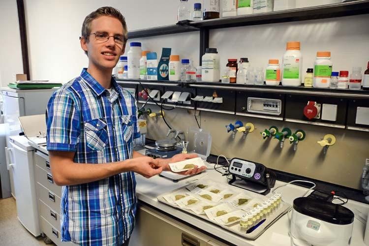 Christoph Hahn füllt die verschiedenen Grünkohlpulver in kleine Gläser, um später deren Inhaltsstoffe zu analysieren.