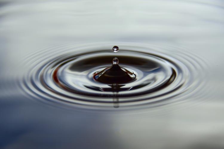 Wegen der anhaltenden Hitze soll mit dem Wasser sparsam umgegangen werden.