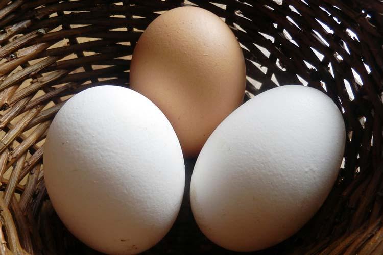 Zur Osterzeit sind die weißen Eier besonders beliebt.