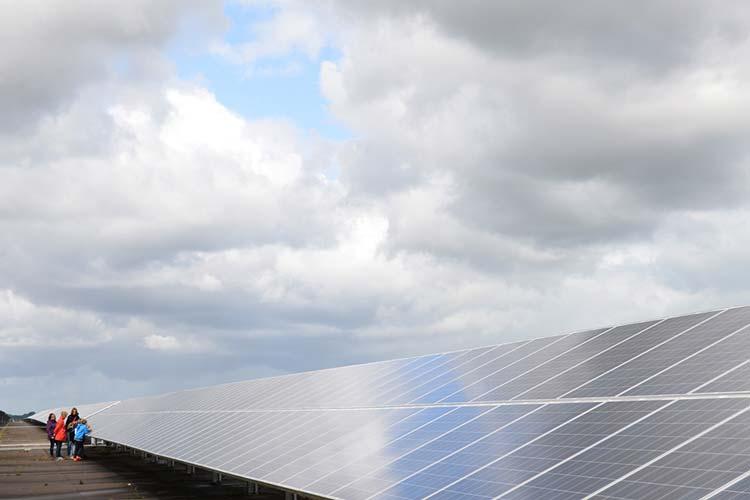 Die Schüler der Grundschule Achternmeer und die Masterstudentin Sarah Hoffmeister begaben sich auf die spielerische Erkundungstour im Oldenburger Solarpark, der heute als Energiestandort im Energieparcours-Nordwest ausgezeichnet wurde.