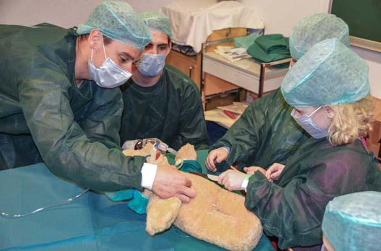 Der Teddy Benny hat Bauchschmerzen und für die Kinder des Elternselbsthilfekindergartens ist klar, er muss im Teddybärkrankenhaus des Klinikums Oldenburg behandelt werden.
