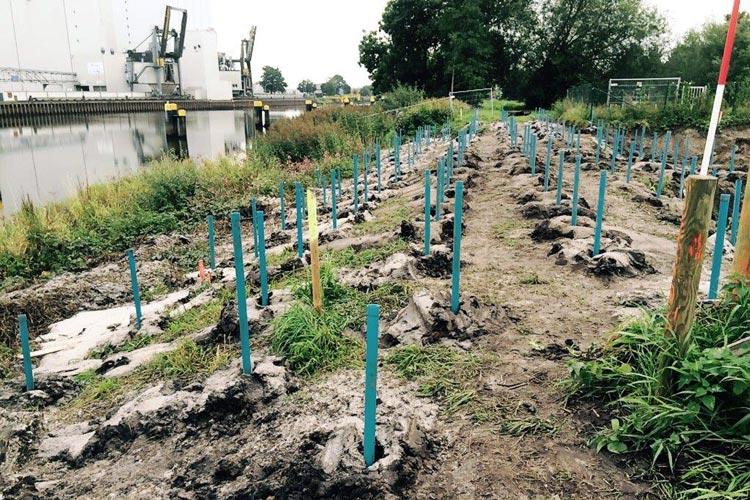 Das zukünftige Baugelände für das neue Wendebecken in Oldenburg wird zurzeit auf Kampfmittel aus dem II. Weltkrieg untersucht.