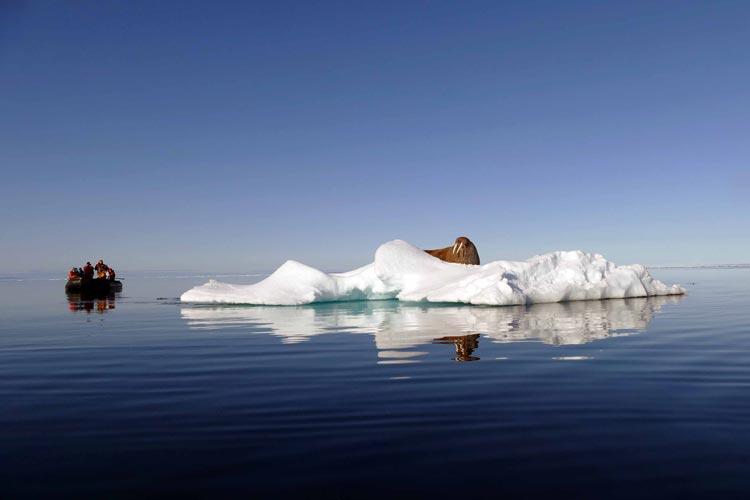 Der Journalist und Pressefotograf Albert Rohloff aus Rastede hat im vergangenen Jahr Svalbard umfahren und jede Menge sehenswerter Bilder und Filme mitgebracht.