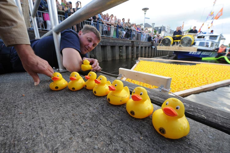 Am Sonntag findet auf der Hafenlust Oldenburg wieder das Entenrennen statt.