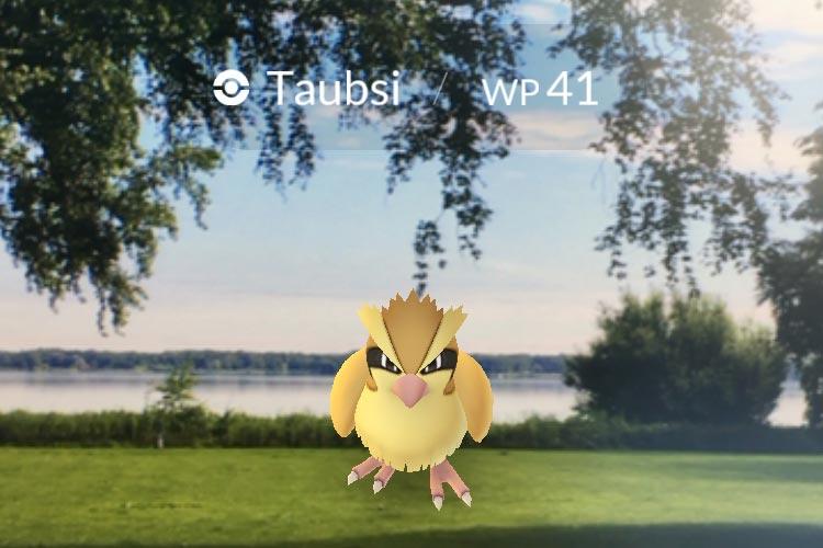 Zur Lichternacht am kommenden Samstag werden für Pokémon-Go Spieler Lockstoffe an den sogenannten Poké-Stops im Bad Zwischenahner Kurpark freigesetzt.