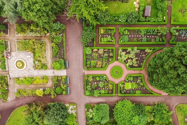 Der Botanische Garten in Oldenburg wird zur Kulisse eines neuen Festivals.