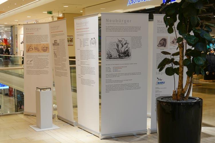 Neubürger heißt eine Ausstellung des NABU über einst exotische Tiere, die in den Oldenburger Schlosshöfen zu sehen ist.