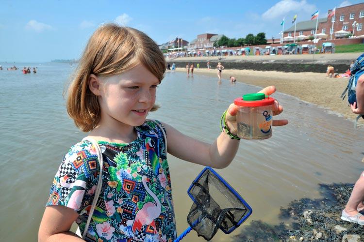 Im Wissenschaftsjahr 2016*17 – Meere und Ozeane findet bis September erneut die Aktion Mein mobiles Küstenlabor für Kinder statt.