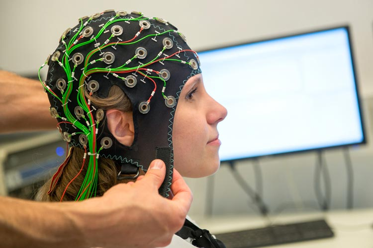 Die Universität Oldenburg richtet einen neuen interdisziplinären Studiengang Physik, Technik und Medizin zum Wintersemester ein.
