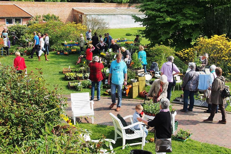 Zum Saisonauftakt im Oldenburger Schlossgarten findet ein Gartenflohmarkt im Küchengarten statt.