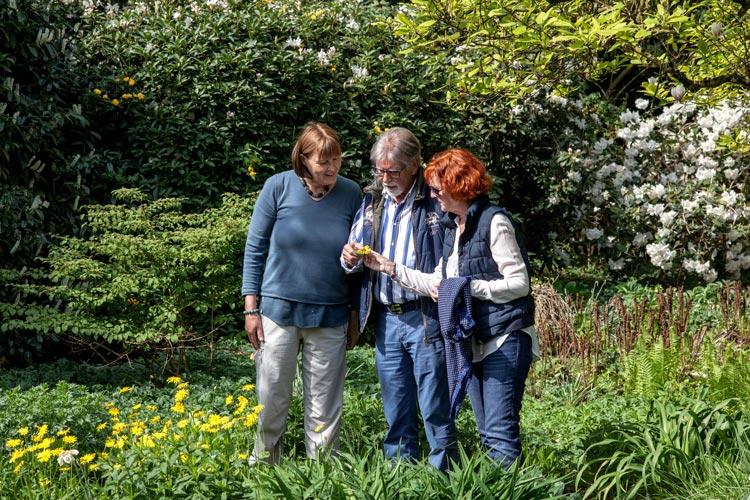 Auch in diesem Jahr laden im Ammerland Gartenbesitzer wieder alle Interessierten ein, sich ein Eindruck von ihren besonderen Orten im Grünen zu machen.