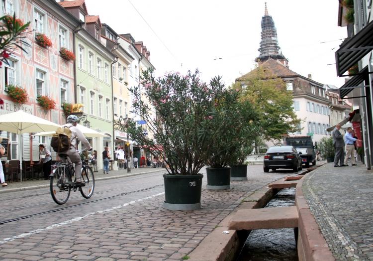 Freiburg, über dts Nachrichtenagentur