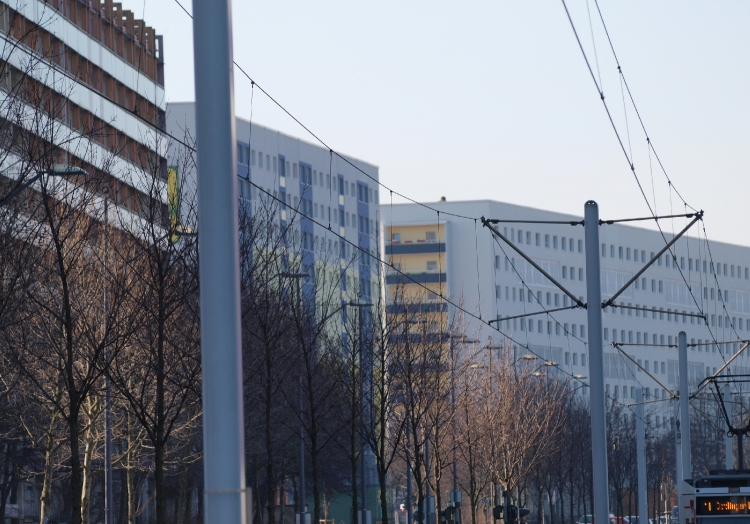 Wohnhäuser, über dts Nachrichtenagentur