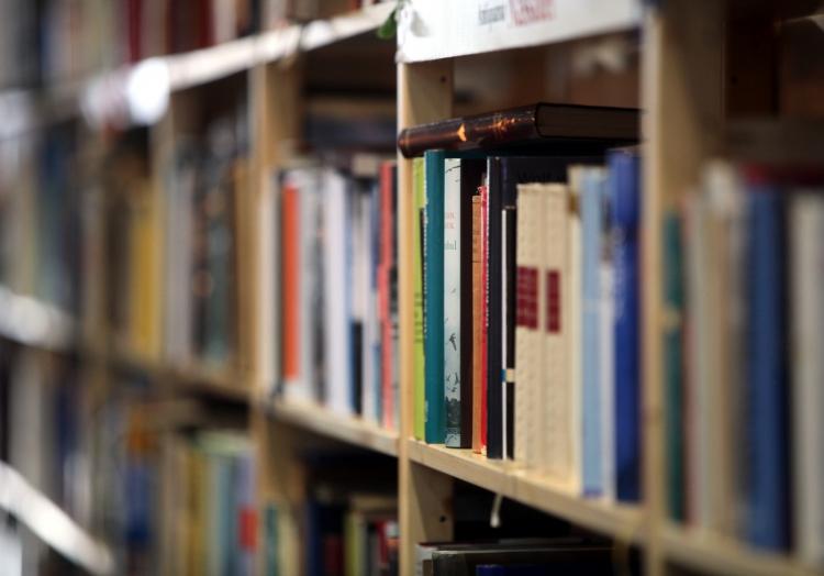 Bücher, über dts Nachrichtenagentur