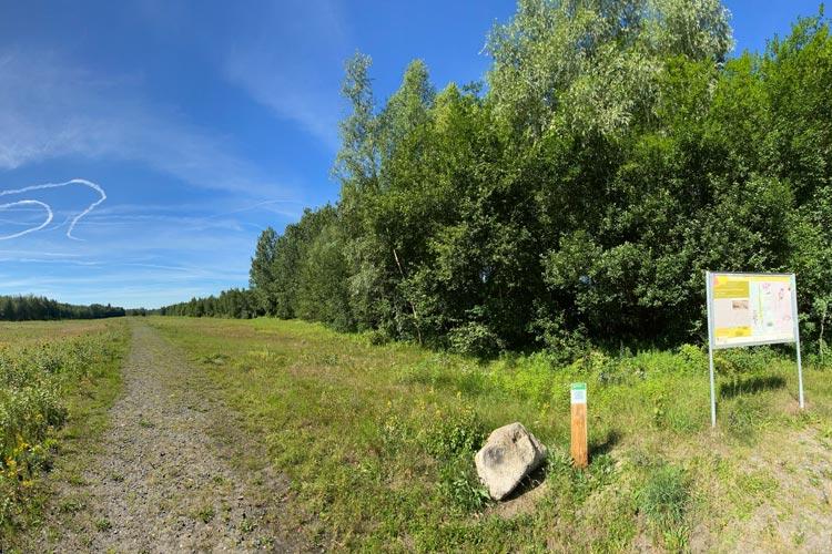 Das Bahndammgelände Krusenbusch ist ein besonderes Naturschutzgebiet. Ein virtueller Lehrpfad bietet jetzt Informationen für Interessierte.