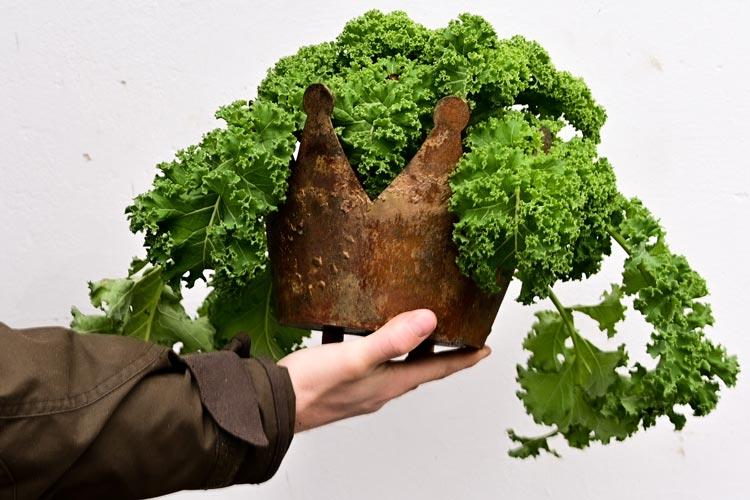 Noch bis zum 21. Februar sucht das ZEHN die besten Grünkohlgerichte, kreativ in Szene gesetzt.