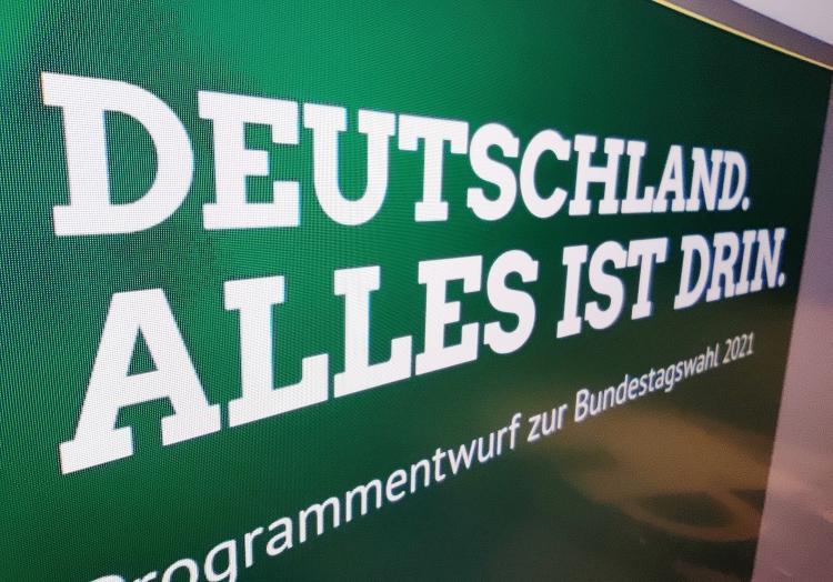 Grünen-Wahlprogramm 2021, über dts Nachrichtenagentur