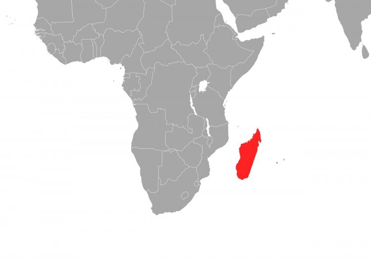 Madagaskar, über dts Nachrichtenagentur