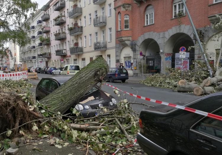 Schäden nach Sturmtief ´Xavier´, über dts Nachrichtenagentur
