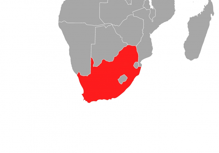 Südafrika, über dts Nachrichtenagentur