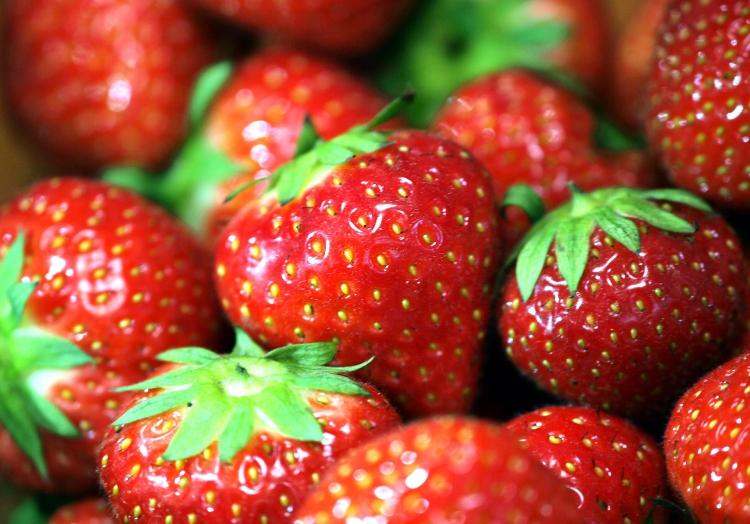 Erdbeeren, über dts Nachrichtenagentur